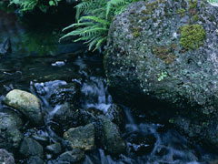兵庫県 有馬温泉の画像